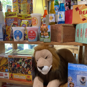 Cotton candy and stuffed lion at Rocket Fizz of Asheville